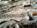 moonplatte36.jpg