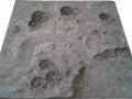 moonplatte52.jpg