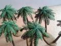 palmen15
