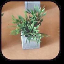 plantertitel