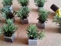 planter07