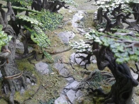 Gekonnt ist gekonnt - Citadel Woods